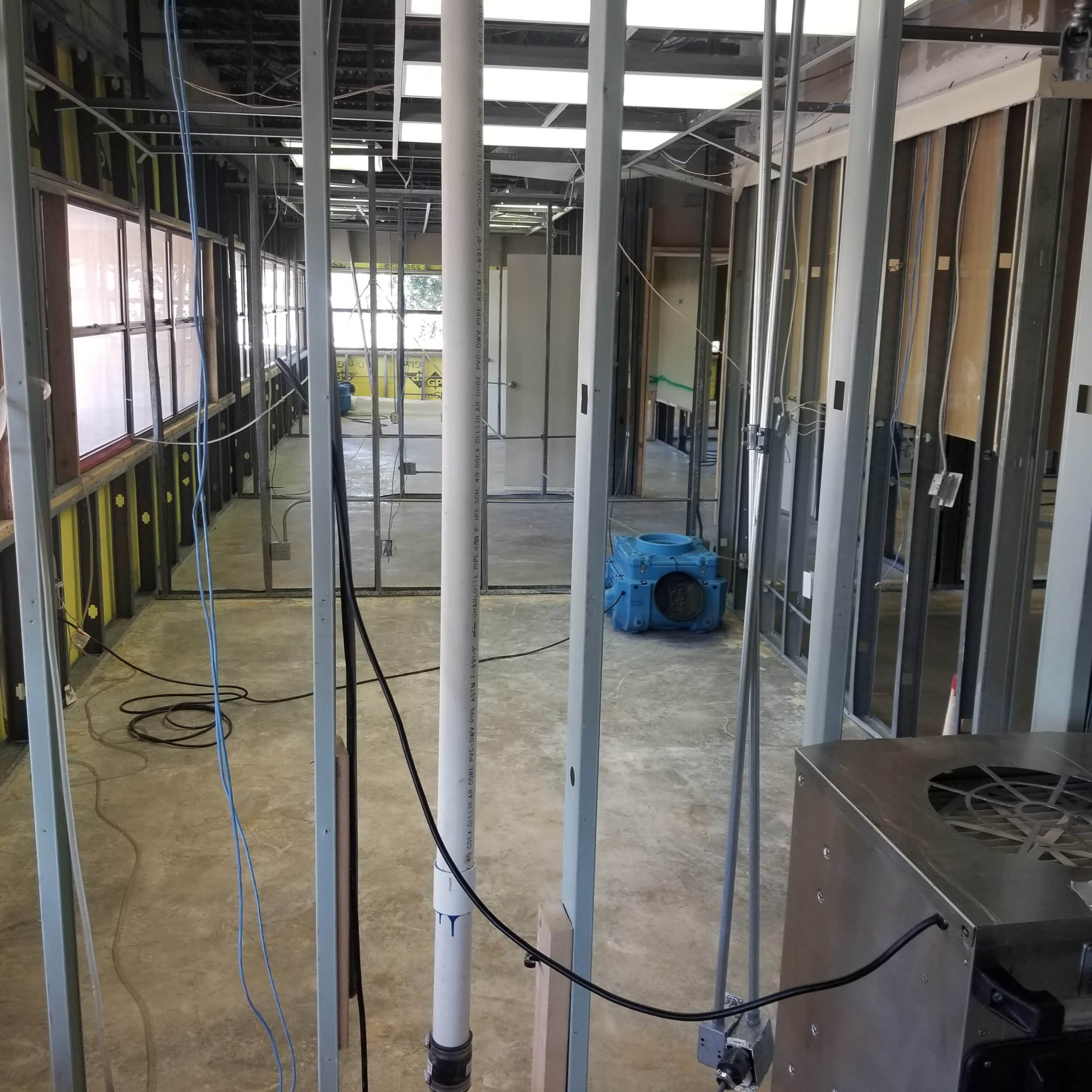 commercial building mold remediation