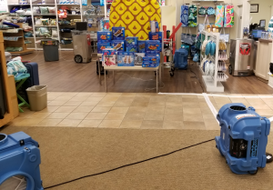 Commercial Disinfection in Retail Store
